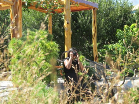 The Photographer in her natural habitat. Yes, I did hide in the bushes to get this shot.